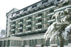 Hotel Bradul - Vatra Dornei