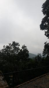 Auberges de jeunesse - Summer Mist