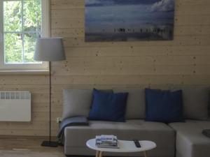 Scandinavian style house