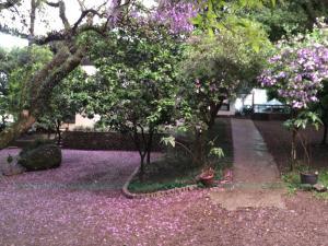 Hotel Villa Deifiori, Hotels  Bento Gonçalves - big - 33