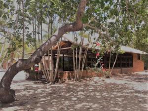 Armonia Lagoa Paraiso, Penziony  Jijoca de Jericoacoara - big - 34