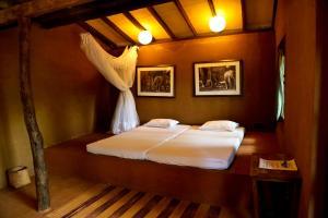 Auberges de jeunesse - Galkadawala Forest Lodge