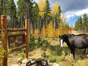 Blue Sky Mountain Ranch, Prázdninové domy  Black Hawk - big - 9