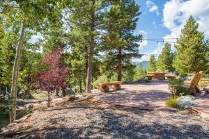 Blue Sky Mountain Ranch, Prázdninové domy  Black Hawk - big - 7
