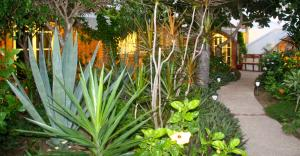 El Sol La Vida Beach Front Resort - Adults Only
