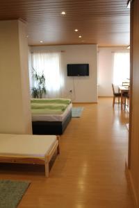 Apartmán v dobré lokalitě - Medlánky