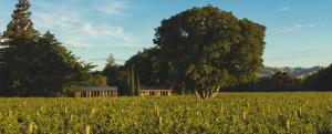 obrázek - Walnut Block Cottages