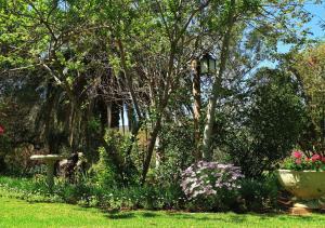 Berluda Farmhouse and Cottages, Ferienwohnungen  Oudtshoorn - big - 73