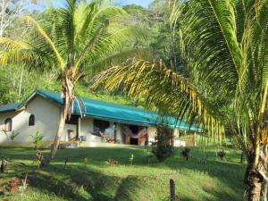 Jungle Retreat - Сьерпе