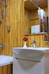 Otel Kavkazioni Twins, Hotely  Lagodechi - big - 45