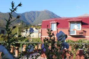Otel Kavkazioni Twins, Hotely  Lagodechi - big - 75