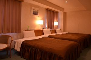 Southern Cross Inn Matsumoto, Отели эконом-класса  Мацумото - big - 16