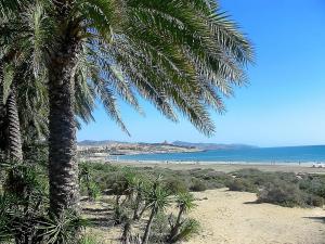 Solymar Jasmin A3, Costa Calma