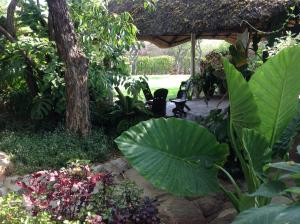 Lynns Guest House - Bulawayo