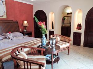 Villa Pelicano, Bed & Breakfasts  Las Tablas - big - 9