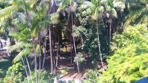 Rancho Quinta do Conde, Alloggi in famiglia  Lauro de Freitas - big - 23