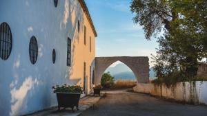 Molino del Arco (4 of 57)
