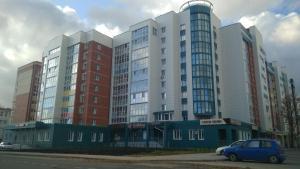 Apartment on Moskovskiy prospekt - Bogorodskoye