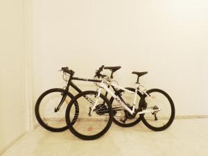 Vatican Bike