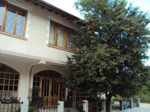 Amfora Guest House