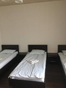 Mini-hotel Megora - Hotel - Rakhiv