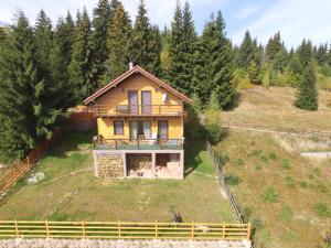 Cabana Cindy, Holiday homes  Muntele Cacovei - big - 46