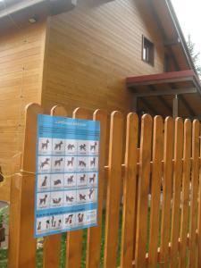 Cabana Cindy, Holiday homes  Muntele Cacovei - big - 31