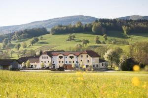 Landhotel Gafringwirt - Purgstall