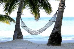 Nika Island Resort & Spa, Maldives, Rezorty  Mativeri - big - 9