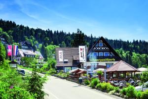 Hotel-Berggasthof Schwarzwaldperle - Hundsbach