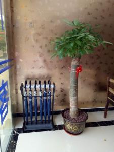 Shangke Business Hotel, Hotel  Yunlong - big - 32