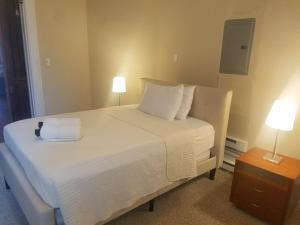 Spacious and Clean 1 Bedroom Studio - Manayunk