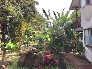 Hostal Marari, Guest houses  Hanga Roa - big - 42