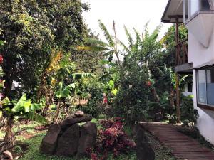 Hostal Marari, Guest houses  Hanga Roa - big - 31