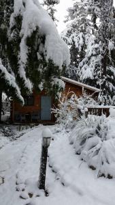 Aley Galil, Lodges  Amuka - big - 42