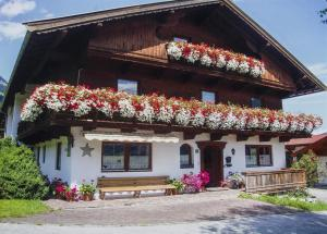 Bauernhof Hinterfirst - Apartment - Söll