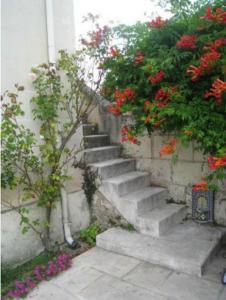 Le Clos de la Chapelle - Gîte Les Magnolias