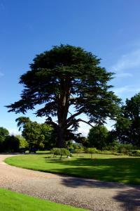 Glewstone Court (26 of 148)