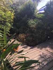 Sulam Ya'akov, Дома для отпуска  Маале-Гамла - big - 19