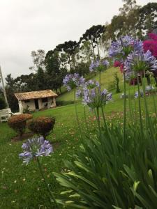 Chalés Vista Linda, Horské chaty  São Bento do Sapucaí - big - 16