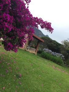 Chalés Vista Linda, Horské chaty  São Bento do Sapucaí - big - 48