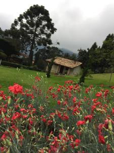 Chalés Vista Linda, Horské chaty  São Bento do Sapucaí - big - 5