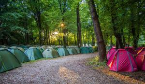 Oktoberfest and Springfest All Inclusive Camping