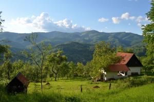 Accommodation in Păuleşti