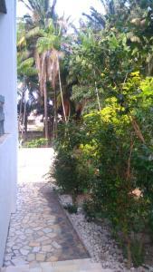 Rancho Quinta do Conde, Alloggi in famiglia  Lauro de Freitas - big - 25