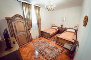 Antique Apartment Sibiu - Sibiu