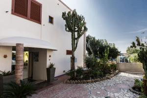 14 Leoni, Bed & Breakfasts  Salerno - big - 74
