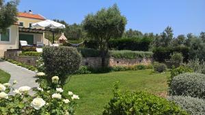 Villa Mirothea Alonissos, Villák  Alóniszosz óvárosa - big - 4
