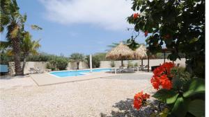 Aruba Villa Florida, Ville  Noord - big - 25