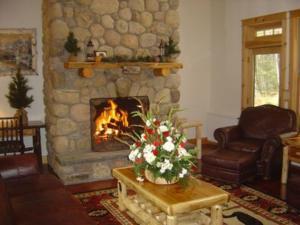 obrázek - Adirondack Lodge Retreat